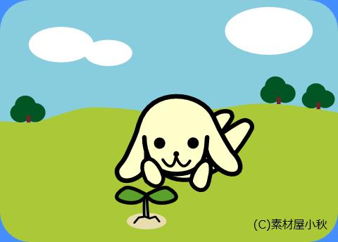 みどりの日(5月4日)のピクじろう