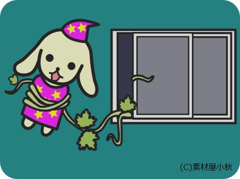 5月8日(ゴーヤーの日)のピクじろう